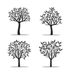 Set black trees with leafs vector
