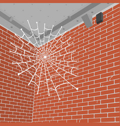Spider web in the corner of the room vector