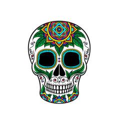 mexican sugar skull with floral ornament dia de vector image