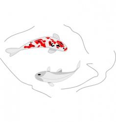 two koi carps vector image
