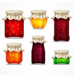 natural fruit jam preserves vector image vector image