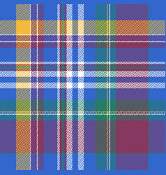 blue plaid tartan seamless pattern vector image