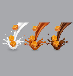 Caramel milk and chocolate splashes set vector