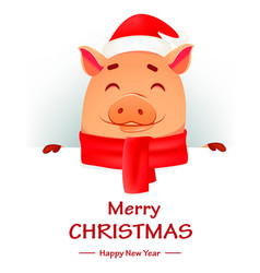 christmas greeting card cute pig vector image