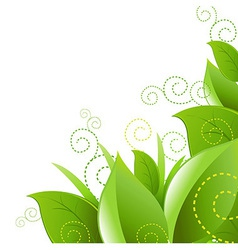 Leafs And Grass vector image