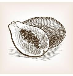 Papaya hand drawn sketch style vector image