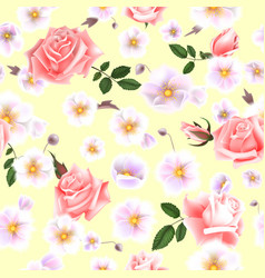 roses seamless pattern a bouquet of delicate vector image vector image