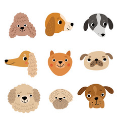 9 dog faces cute dogs set vector image