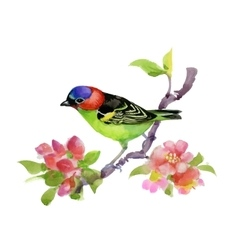 Bird on watercolor blooming tree vector