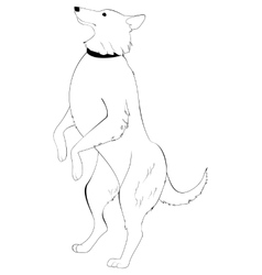 dog standing on hind legs vector image