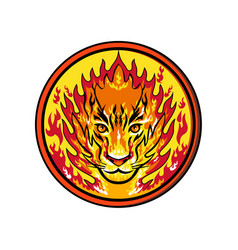 Flaming tiger head icon vector