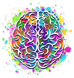 human brain abstract colorful silhouette vector image