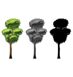 set of tree design vector image