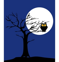 tree owl vector image