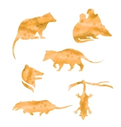 watercolor silhouettes of a opossum vector image