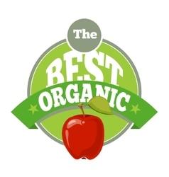 The best organic fruit logo template vector image