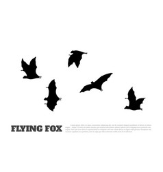 black silhouette a japanese flying fox vector image