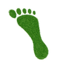 Footprint grass vector