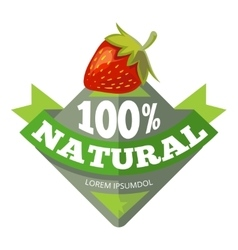 Organic natural fruits logo label badge vector image