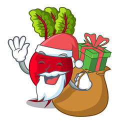 Santa with gift whole beetroots with green leaves vector