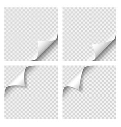 set curly page corner blank sheet paper vector image