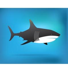 Shark week vector