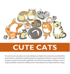 cartoon cute cats and kittens pet playing vector image vector image