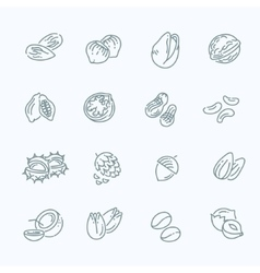 web icons collection - nuts beans and seed vector image