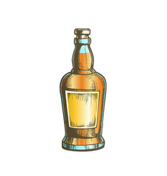 Color hand drawn whisky bottle with blank label vector