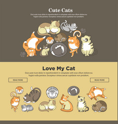 Cute cats and kittens pets playing or posing vector
