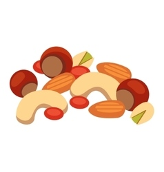 Pile of nuts vector image