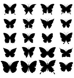 set butterflies for design vector image