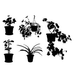 set different flowers in pots vector image