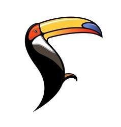 Cute colourful cartoon toucan vector image