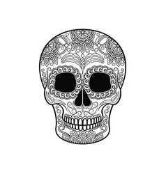 day of the dead skull sugar skull with floral vector image vector image