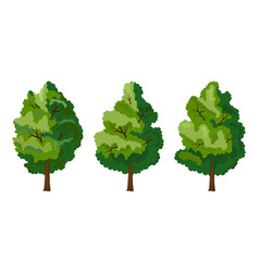 set of three summer tree vector image