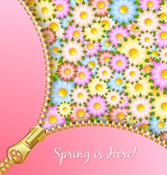 Spring zipper with flowers vector