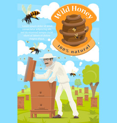 Beekeeping and beekeeper at honey apiary vector