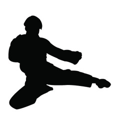 Karate man silhouette vector image