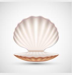 Open empty seashell icon vector