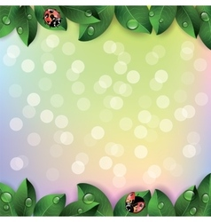 Red ladybugs and green leaves vector image