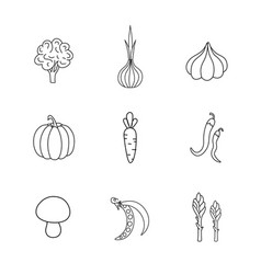 set hand drawn vegetables handdrawn elements vector image