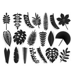 Tropical black paper cut leaves trendy summer vector