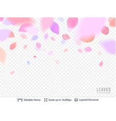 pink pastel petals on transparent background vector image vector image