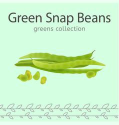 green snap beans vector image