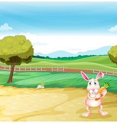 A bunny holding a carrot vector image