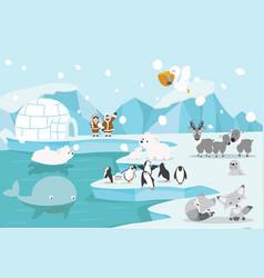 animals north pole arctic landscape vector image