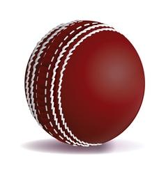 Cricket Ball Isolated vector