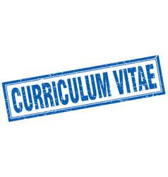 Curriculum vitae square stamp vector