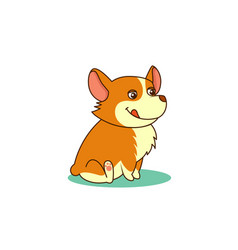 cute dog of welsh corgi of vector image